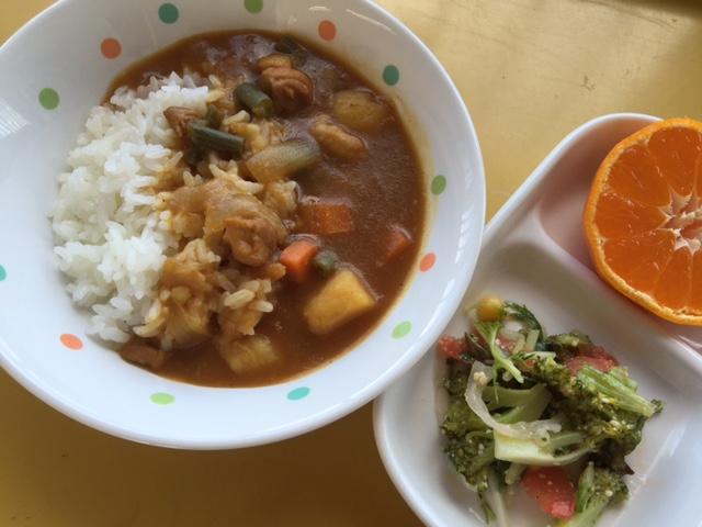 チキンカレー&野菜サラダ・みかん